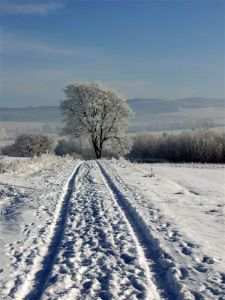 2009_0109_Uslar_im_Winter0123