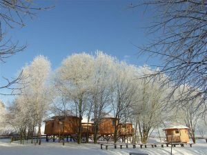2009_0109_Uslar_im_Winter0111